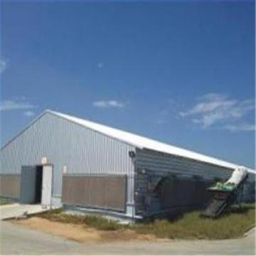 Pre-Engineering Industrial Layer Chicken Poultry House Structure Poultry House&Shed
