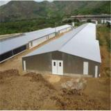 Poultry House, Livestock, Chicken House, Poultry Farm (PCH-9) chicken house