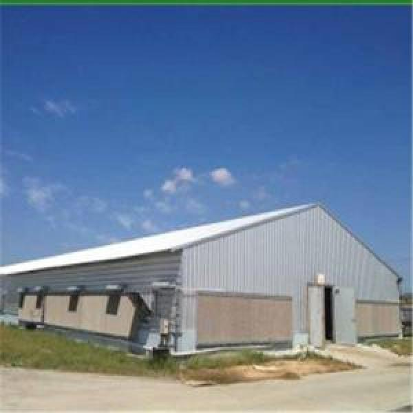 Light Steel Chicken House with Corrugated Steel Sheet and Fiber Glass Insula chicken house #1 image
