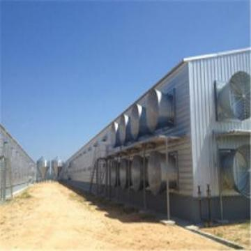 Prefabricated Steel Structure Enclosed Poultry House/Chicken House (KXD-PCH9 chicken house