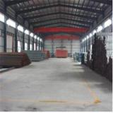 Professional Supplier-Steel Structure Warehouse (SSW Agricultural Steel Structure building