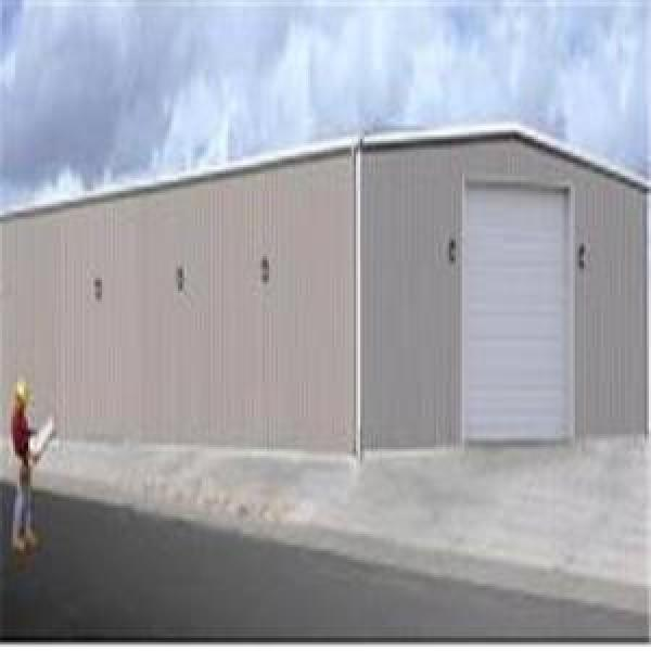 Buy Steel Structure Warehouse (SS-333) Agricultural Steel Structure building #1 image
